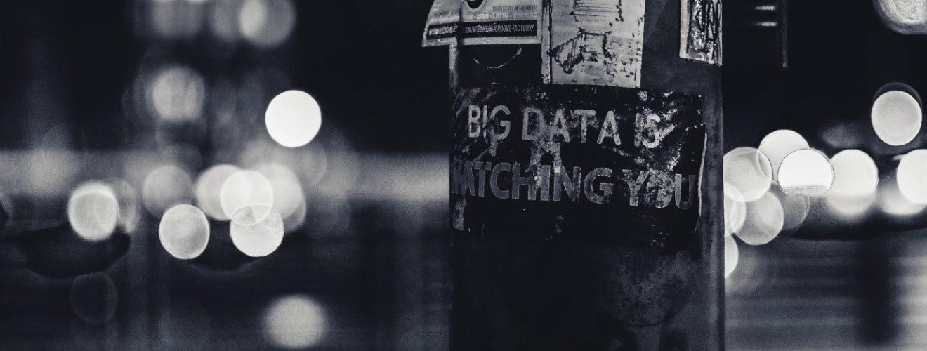 Wild data Photo by ev on Unsplash